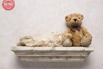 بک دراپ تولد تم خرس عروسکی و تاقچه -کد 6334