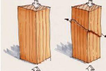 خواص فیزیکی و مکانیکی چوب