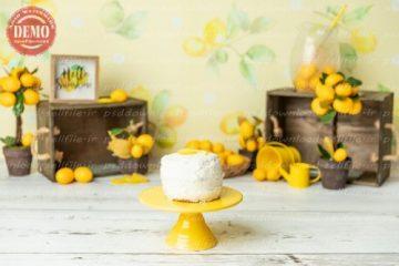 بک دراپ تولد تم لیمو -کد 7734